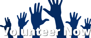 Volunteer Now Hands